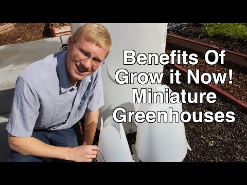 Grow it Now! Miniature Greenhouses At A Glance