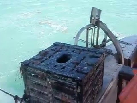 Stone Crab fishing in the Florida Keys