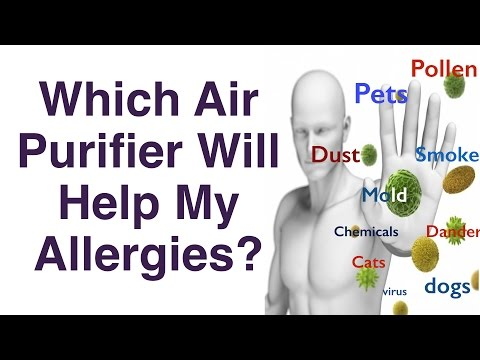 Best Air Purifier For Allergies - To Pets, Cats, Dogs, etc.