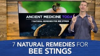 Download 7 Natural Remedies for Bee Stings Video