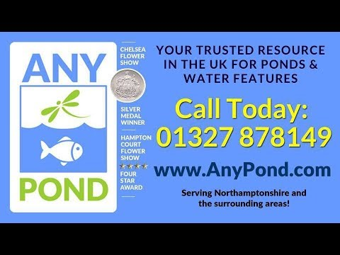 Any Pond Limited - About Us
