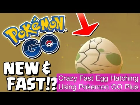 FASTER EGG HATCHING With POKEMON GO PLUS
