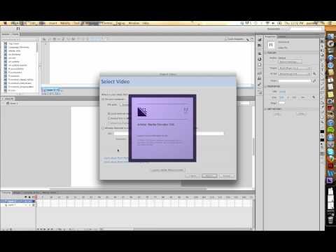 Flash CS6: Video