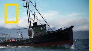 الجزيرة المتمردة / حلقات ألاسكا: عطاء المحيط | ناشونال جيوغرافيك أبوظبي