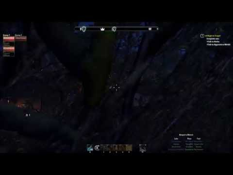 ESO Mount Hitch Bug Plus Werewolf Surfing on a Tiger