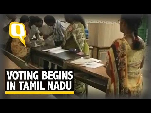 The Quint: Tamil Nadu Polls: Over 3k Candidates Contest for 232 Seats