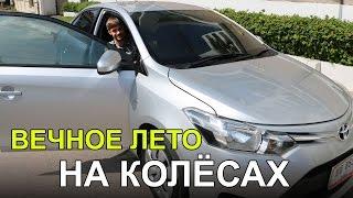 АРЕНДА АВТО В ПАТТАЙЕ - ВСЕ ПОДРОБНОСТИ, Toyota Vios   ТАЙЛАНД ☼