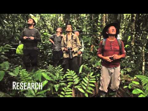 Life in the Amazon with Greenheart Travel