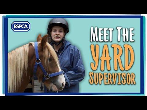 Meet the Yard Supervisor Part 3 (of 4)