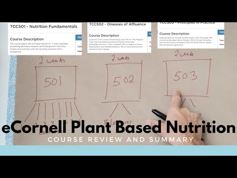 Review and Summary of eCornell Plant Based Nutrition Course