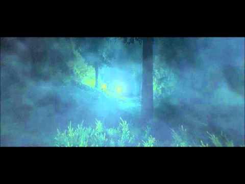Forest.wmv