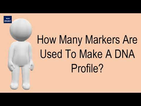 How Many Markers Are Used To Make A DNA Profile?