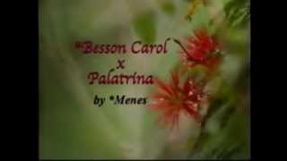 Patrician B - http://www.pedegru.com/animal/patrician-bint-kelah/pedigree