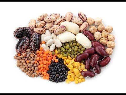 Processing of Common Food Ingredients - Hosokawa Webinar