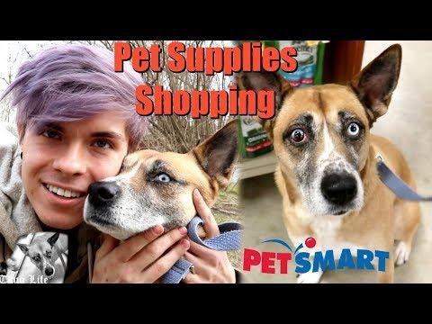 PET SUPPLIES SHOPPING WITH NOVA
