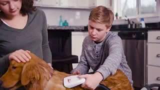 BISSELL Commercial: BarkBath™ version 2 Long