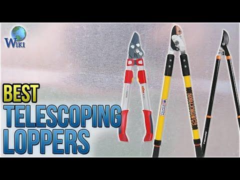 10 Best Telescoping Loppers 2018