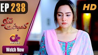Drama | Kambakht Tanno - Episode 238 | Aplus ᴴᴰ Dramas | Tanvir Jamal, Sadaf Ashaan