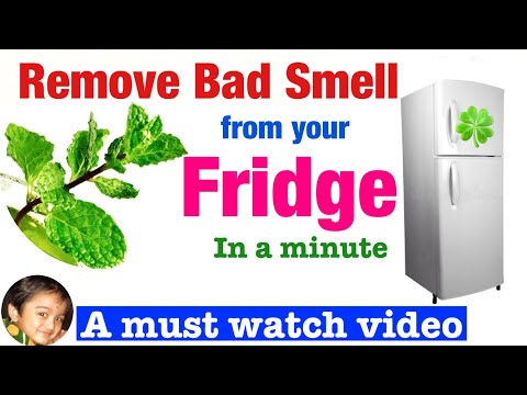 How to remove  bad smell from refrigerator or fridge