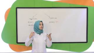 Download 5. Sınıf Türkçe Eğitim Seti Soru Çözümleri Video