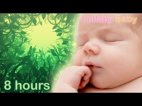 ✰ 8 HOURS ✰ Baby Sleep Music ♫ Lullaby for babies to go to sleep ♫ FOREST SOUNDS ♫ Relaxing Music