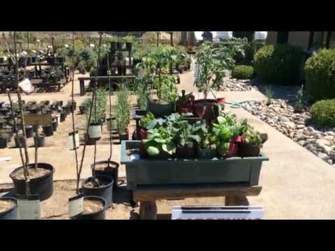 Setting Up The Gro-Matic Planters At Moonlite Nursery!