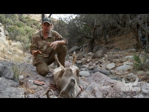 How To Field Dress A Deer With Steven Rinella Meateater