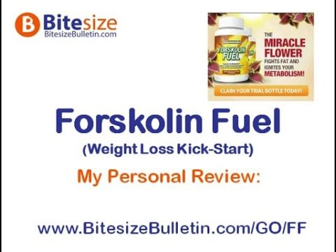 Best Forskolin Supplement that can really Burn Belly Fat?