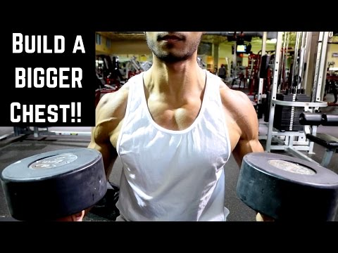 Full Chest Workout | My Routine To Build Up a Flat Chest