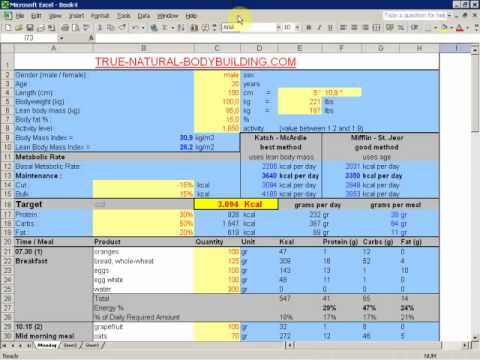 How to make a diet plan with excel: demo video part 2
