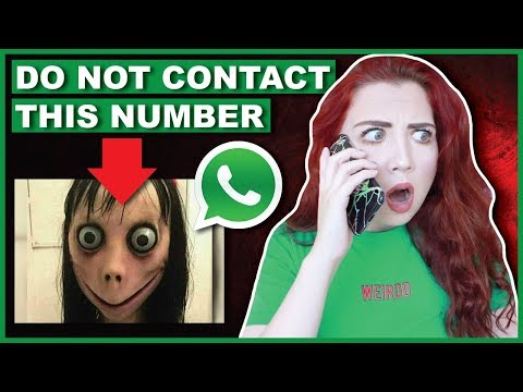 Xxx Mp4 DO NOT Contact Momo Scary Phone Number 3gp Sex