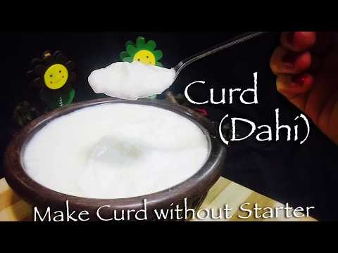 How to Make Thick Curd without Starter at home    The Variety of Flavours