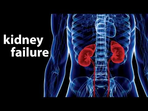 PREVENT KIDNEY FAILURE SUBLIMINAL EXTREMELY POWERFUL AND VERY FAST RESULTS
