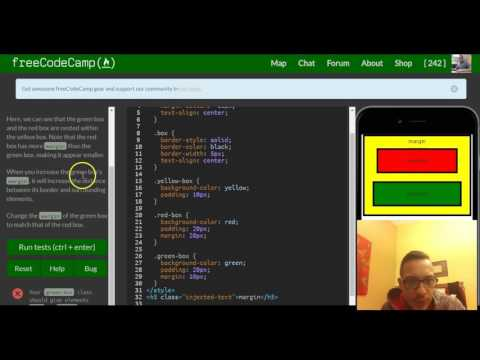Adjust the Margin of an Element , freeCodeCamp review html & css, lesson 40