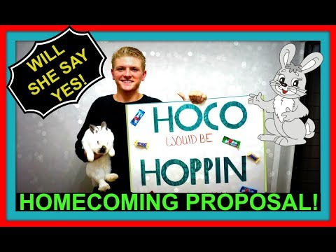HOMECOMING PROPOSAL! | WILL SHE SAY YES?