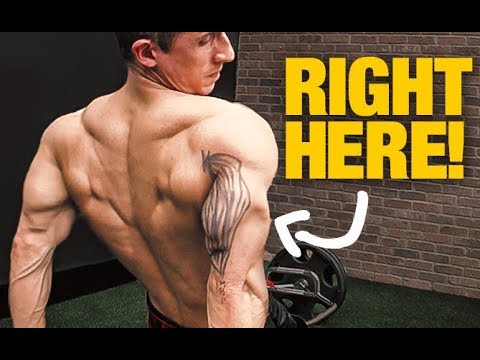 "Triceps Size ""Secret"" (GET BIGGER ARMS!)"