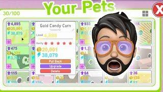 GOLD DOMORTUUS! | Roblox Pet Simulator - Buxrs Videos - Watch