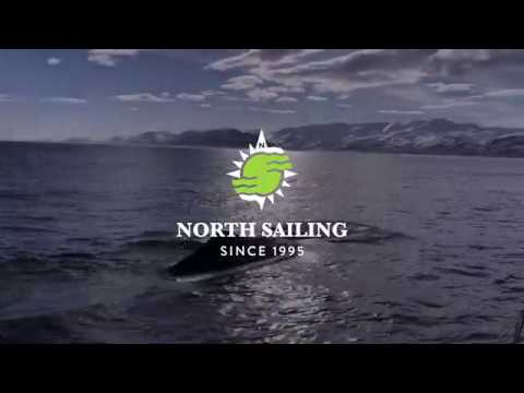 Sperm whales in Húsavík Bay - North Sailing
