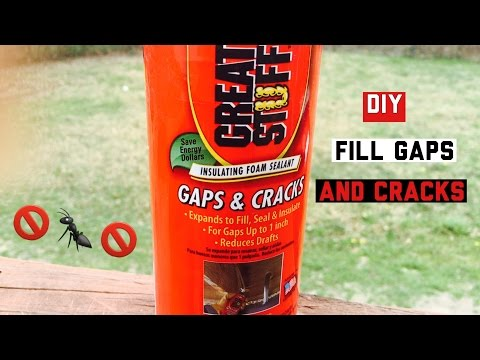 How to fill gaps and cracks | Keep Ants, Spiders and Drafts away