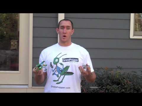 Grasshopper.com a Virtual Phone Service
