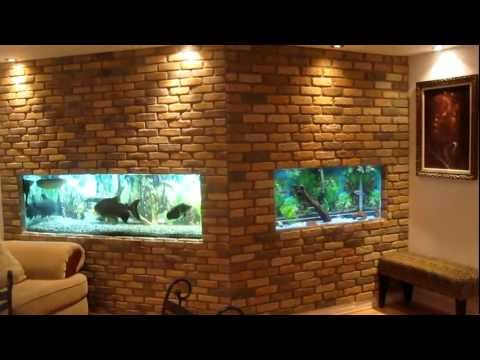 2 in wall fish tanks...BEHIND THE SCENE!!!!!!