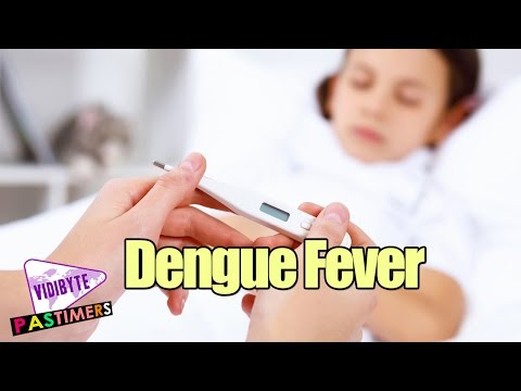 Dengue Fever Symptoms, Causes, and Treatments || Cure Fever Tips