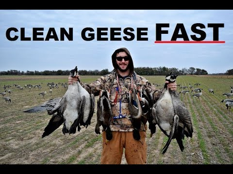 This one Trick Helps! - How To Easily Clean a Goose