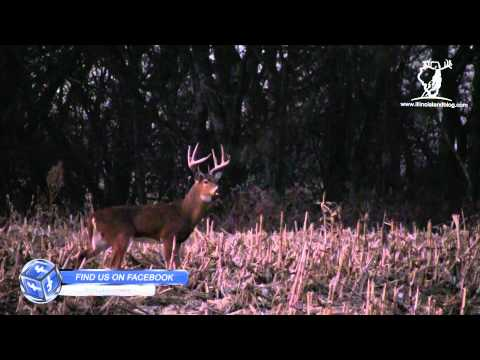 Young Eight at Grand Valley - 400 Acres Hunting Land for Sale