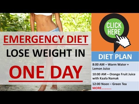 LOSE WEIGHT IN ONE DAY GUARANTEED | ONE DAY DIET PLAN | TRIED AND TESTED | NO EXERCISE NEEDED