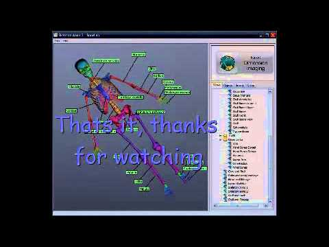 Online Anatomy And Physiology -  GET 3D Bone Anatomy Software FREE!