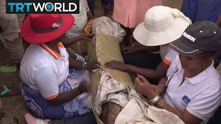 Madagascar Plague Epidemic: Sacred ritual of wrapping dead is a healthrisk