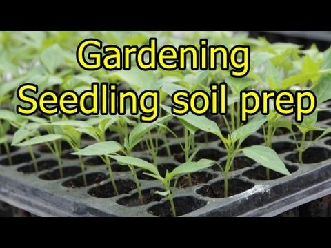Gardening - Soil and seedling prep