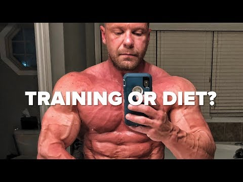 Muscle Building - Is Training or Diet More Important?
