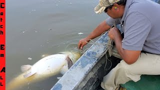 Download FOUND a Giant FISH FLOATING in the Lake! Video